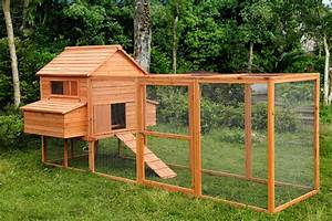 Electric Fencing For Chickens  The Pros And Cons