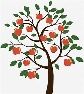 Diagram Apple Tree Image collections - How To Guide And ...