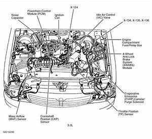 1999 Audi A4 Quattro Engine Diagram