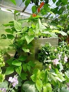 kubi ein vertikales hochbeet fur balkon und terrasse mit With katzennetz balkon mit juwel vertical garden erfahrung