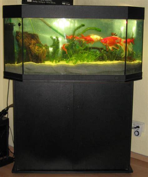 aquarium mit schrank und abdeckung marke juwel ca 120 140liter 515347