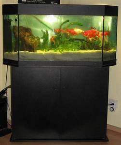 360 Liter Aquarium : aquarium mit schrank und abdeckung marke juwel 515347 ~ Sanjose-hotels-ca.com Haus und Dekorationen
