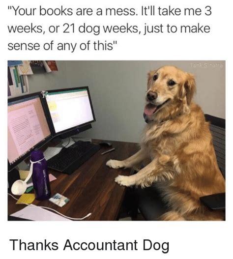 Accountant Dog Meme - 25 best memes about mess mess memes