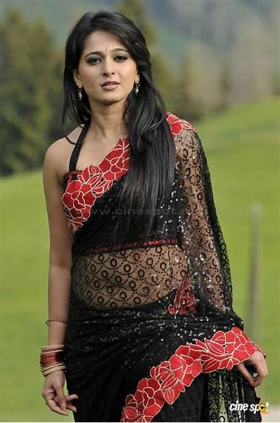 Anushka Shetty Saree Actress Latest Navel Indian