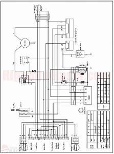 Sunl Atv 250 Wiring Diagram  With Images