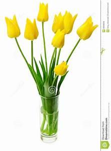 Tulpen In Vase : blumenstrau von gelben tulpen in einem vase stockfoto bild 36938840 ~ Orissabook.com Haus und Dekorationen