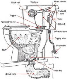 How Does A Toilet Work Diagram Apps Directories