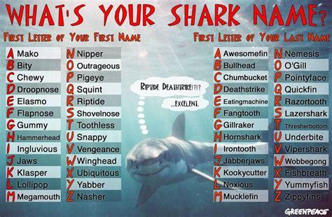 greenpeace shark  game shark names silly names