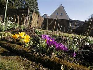 Blumenzwiebeln Pflanzen Frühjahr : blumenzwiebeln pflanzen der richtige zeitpunkt blumenzwiebeln pflanzen blumenzwiebeln und ~ A.2002-acura-tl-radio.info Haus und Dekorationen