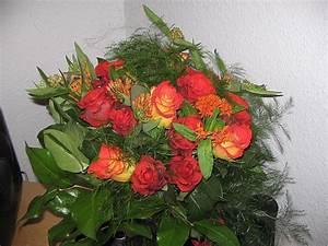 Bilder Von Blumenstrauß : blumenstrau von meinem freund zum 2 jahrestag foto bild pflanzen pilze flechten bl ten ~ Buech-reservation.com Haus und Dekorationen