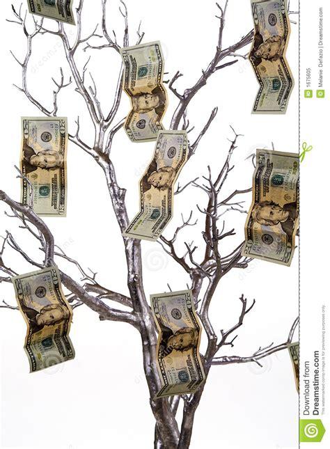 baum mit geld geld baum lizenzfreies stockfoto bild 1675605