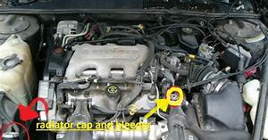 Chevy 3400 Sfi Engine Diagram Bolt