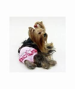Video Pour Chien : culotte pour petits chiens culotte hygienique pour chien femelle couche culotte pour chienne ~ Medecine-chirurgie-esthetiques.com Avis de Voitures
