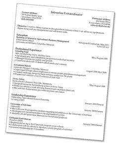 Resume Pointers by How To Write An Effective Resume Pointers That Will Help Your Resume Stand Out From A Crowd