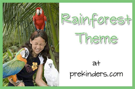 preschool rainforest lesson plans animals activities and lesson plans for pre k and 835