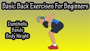 Basic Back Exercises For Beginners