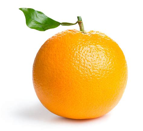 cuisine gala oranges filet x 2 kilos groupement d 39 achat pour