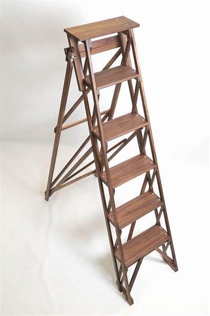Ladder Wooden Stepladder Step Walnut Stairs Wood