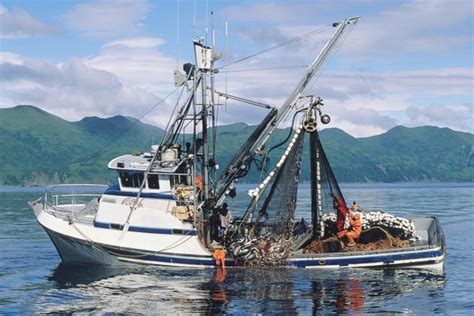 Commercial Fishing Boat Images by Commercial Fishing Industry Services Crowley