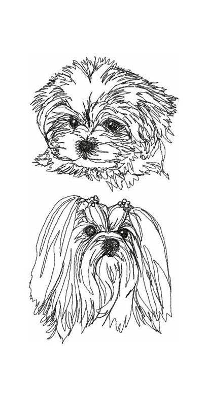 Maltese Embroidery Designs Advanced Dog Shih Pages