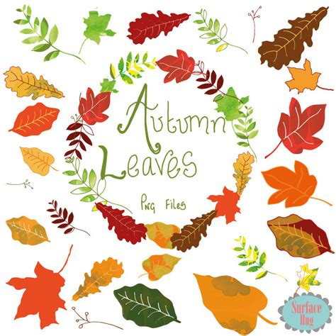 clipart autunno clipart clipart autunno foglie foglia foglia clipart