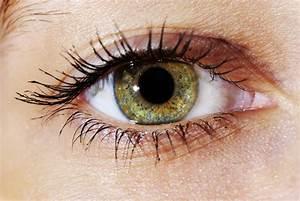 Yeux Verts Rares : les yeux clairs sont ils plus sensibles la lumi re ~ Nature-et-papiers.com Idées de Décoration