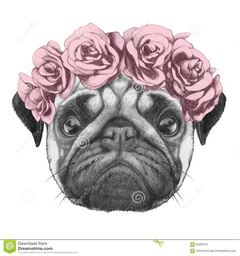 Portrat Of Pug Dog With Floral Head Wreath Stock