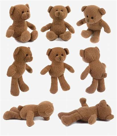Bear Teddy Clipart Brown Doll Pngtree Plush