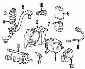 Pontiac Firebird Secondary Air Injection Pump Bracket