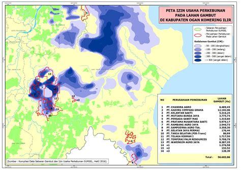 hampir  persen gambut  sumatera selatan dikuasai