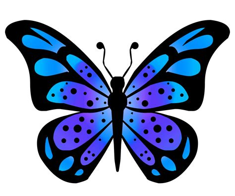 Butterfly Clip Clipart Butterfly 3 Free Stock Photo Domain Pictures