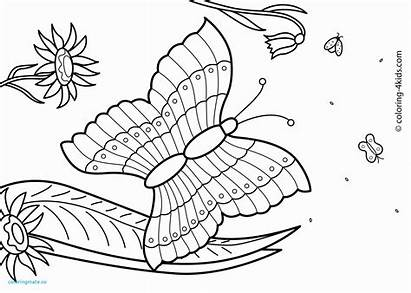 Coloring Summer Pages Pdf Printable Getcolorings