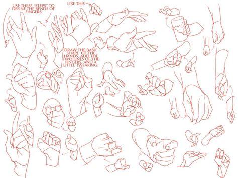 hands anatomy reference hand tutorial  fluent