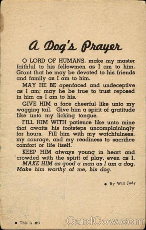 dogs prayer dogs