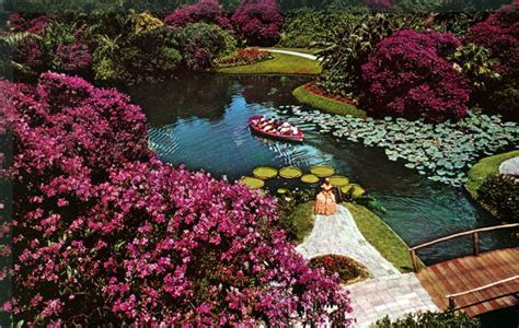 cypress gardens fl florida memory boats filled with tourists enjoy cypress