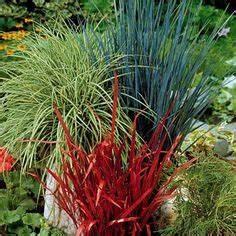 creer une rocaille rocaille de fleurs rocaille plantes With beautiful amenagement de petit jardin 4 tout savoir sur les jardins de bord de mer
