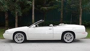Cadillac Eldorado leather cars for sale