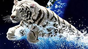 White Tiger Widescreen 3840x2400 Hd Wallpapers ...