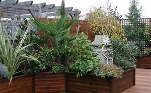 Plantes D Hiver Extérieur Balcon : terrasses et balcons vente plantes pour terrasses et ~ Nature-et-papiers.com Idées de Décoration