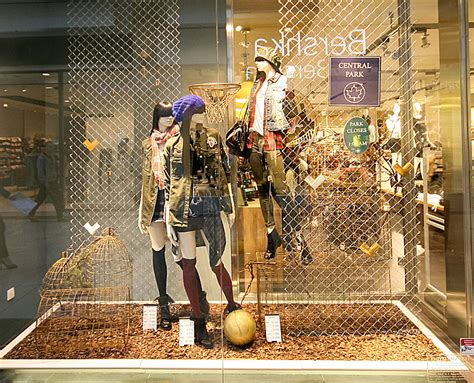 stradivarius windows  autumn budapest