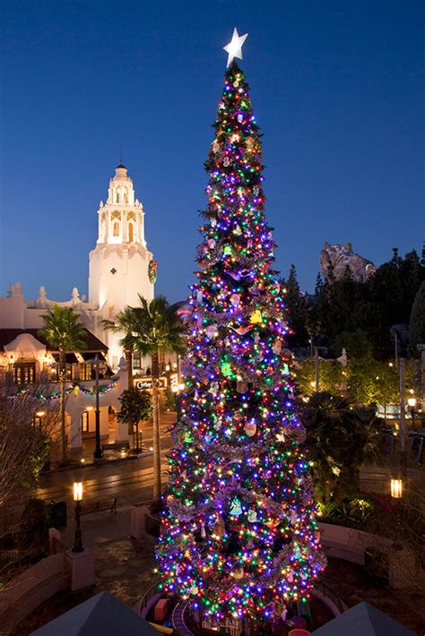 christmas trees of the disneyland resort 171 disney parks blog
