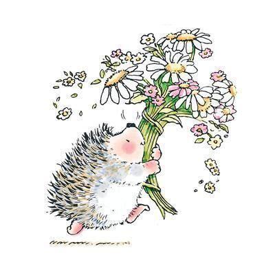hedgehog bouquet igel illustration illustration und