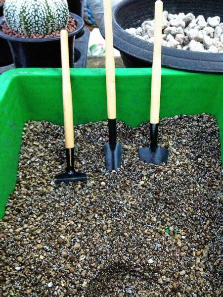 ระเบียงไม้: ส่วนผสมของดิน เพาะปลูกแคคตัสและไม้อวบน้ำครับ ...