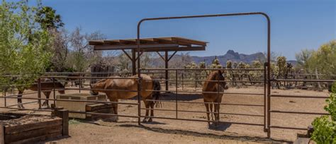 horse property corral crucial considerations buying
