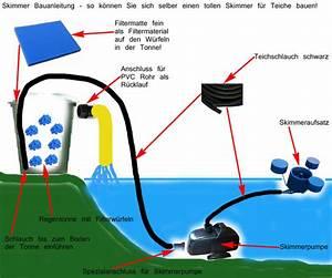 Filter Für Regenwasser Selber Bauen : teichskimmer selber bauen teich filter ~ One.caynefoto.club Haus und Dekorationen