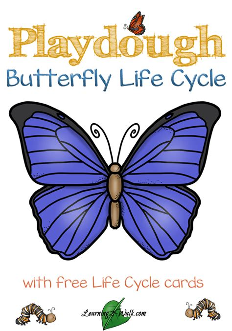 butterfly life cycle for preschool playdough butterfly cycle preschool science activities 818