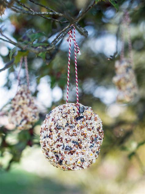 kids craft bird seed christmas ornaments hgtv
