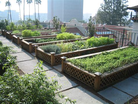 roof top garden urban gardens