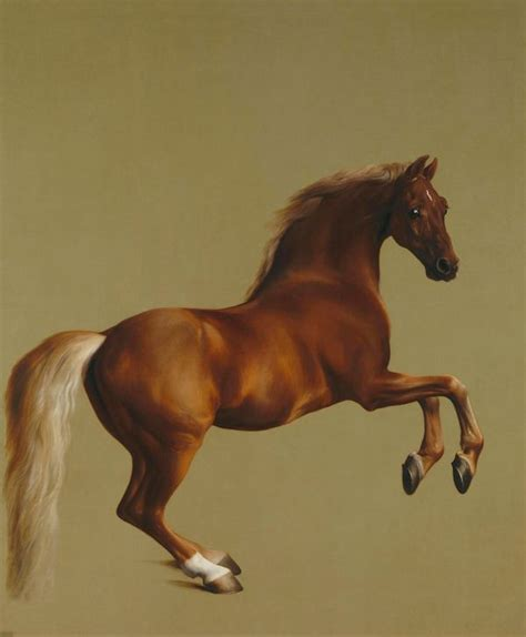 stubbs george whistlejacket animals oil canvas horse painting national 1762 famous anatomy
