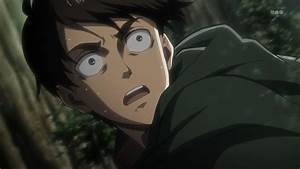 levi | The Online Anime Store
